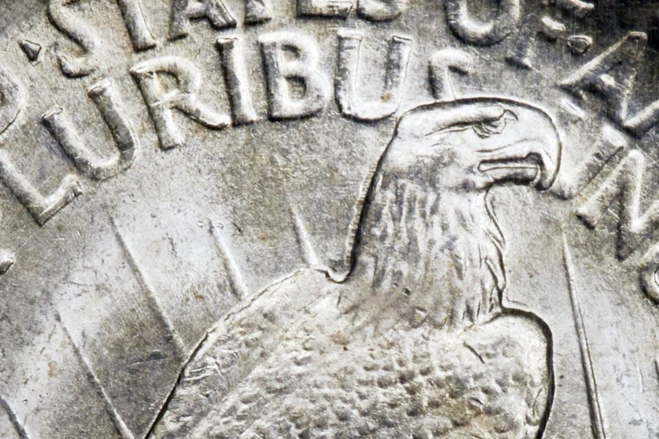 Close-Up of the reverse side of a peace silver dollar.