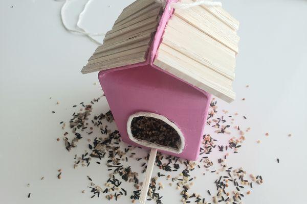 Bird feeder with bird seed