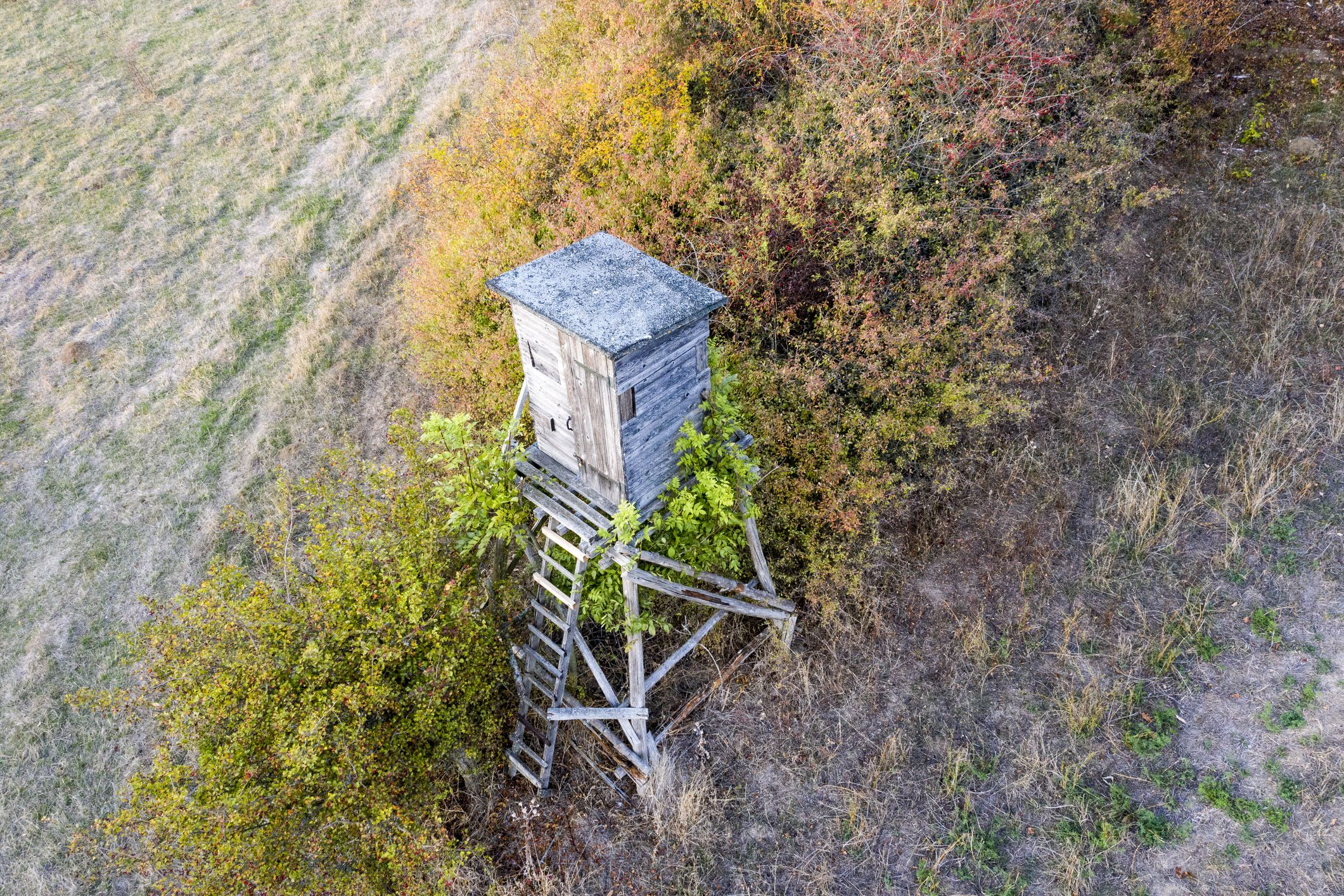 High seat in Lower Saxony in Germany
