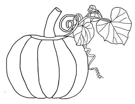 A Pumpkin With Vines And Leaves Best Coloring Pages