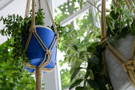 Diy Macrame Hanging Plant Holder