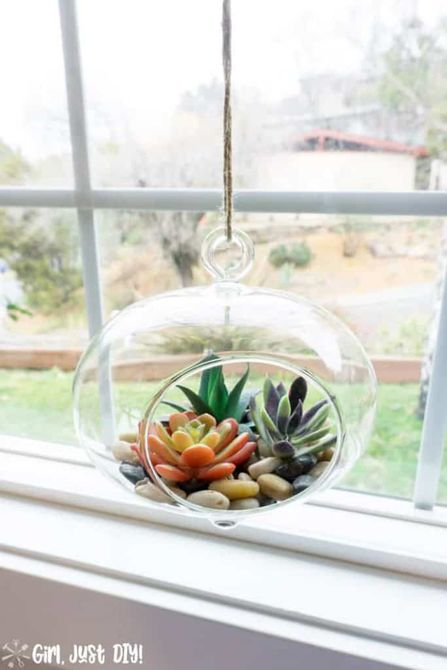 faux succulent terrarium hanging in a window