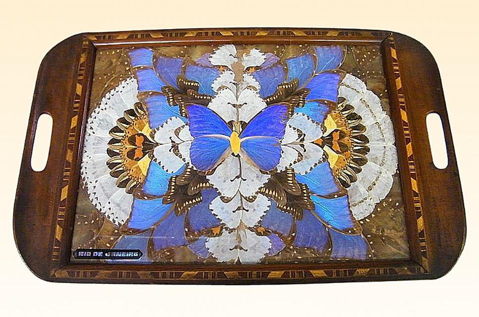 Butterfly Wing Tray from Brazil