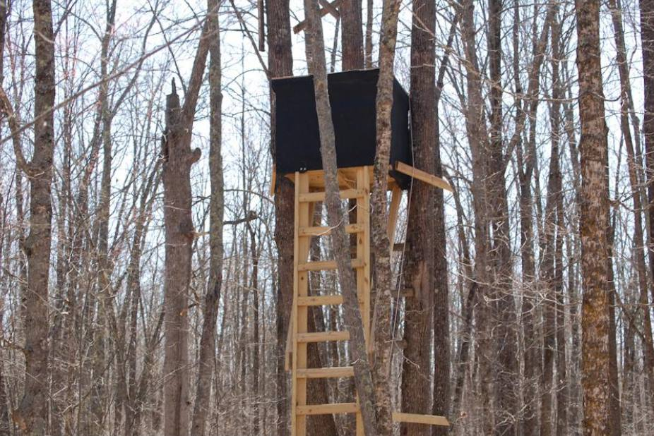 how to build a deer stand in a tree