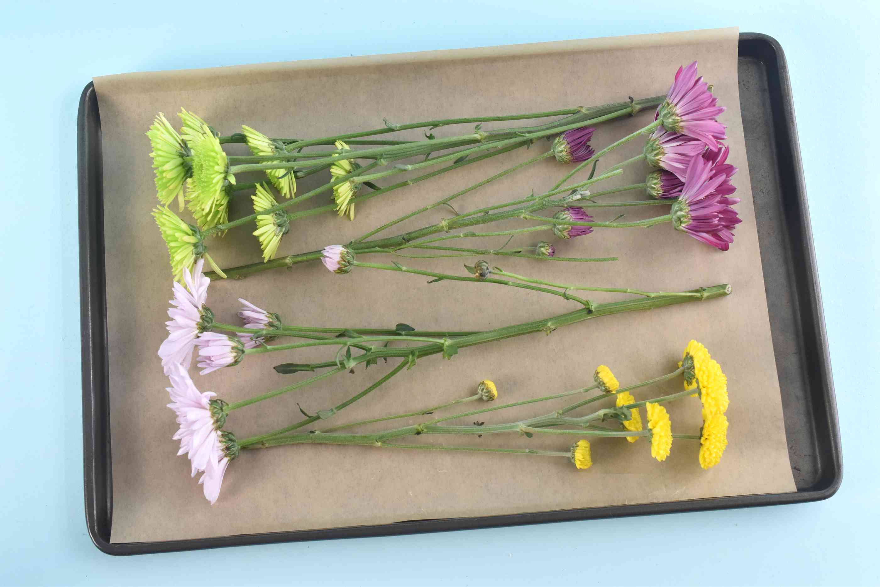 Lay Flower Stems on a Pan to Dry in the Oven