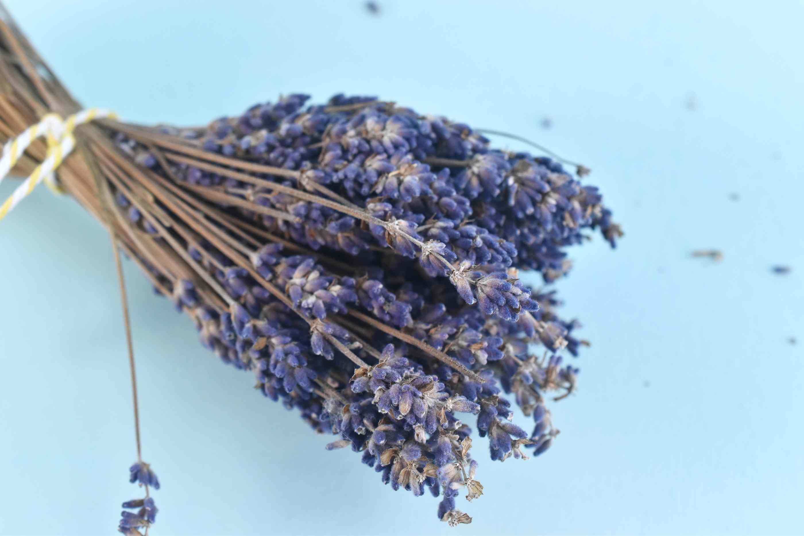 Dried Lavender Herb Bundle