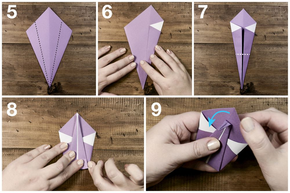 Steps 5 through 9 for folding origami swan including folding different pieces of the paper.