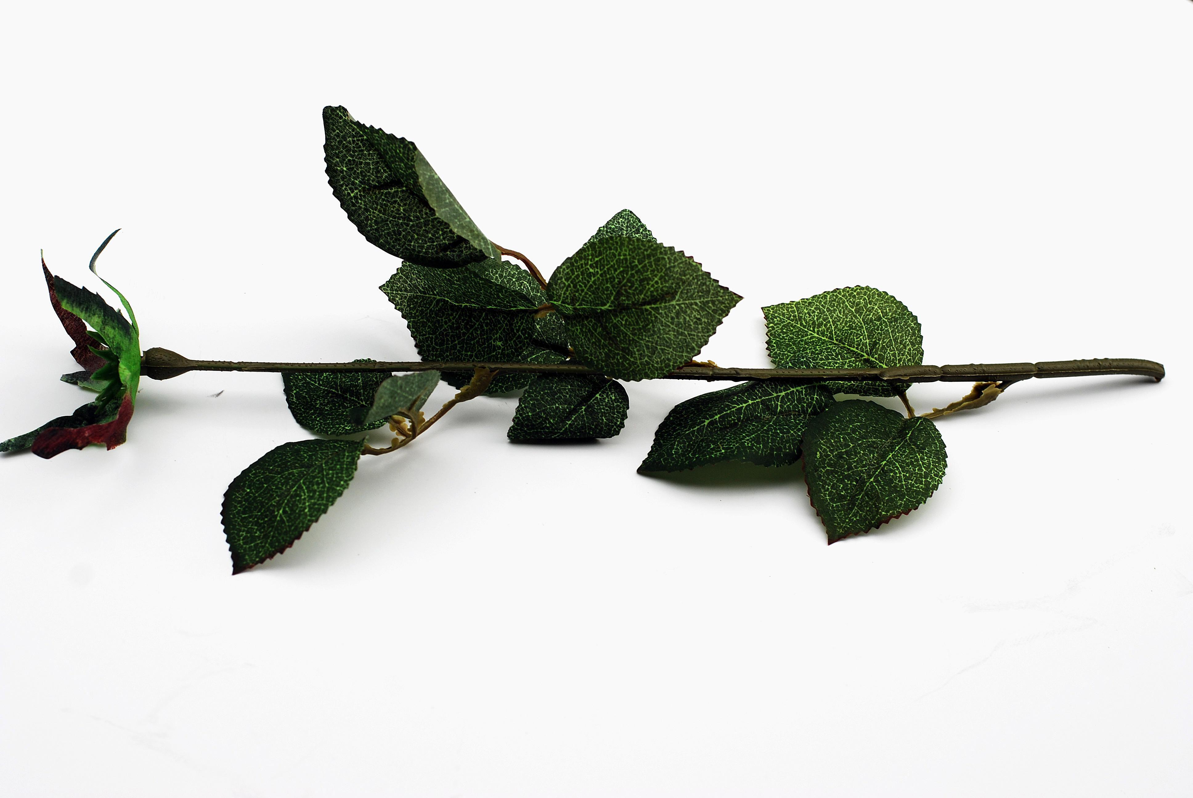Silk rose stem and leaves