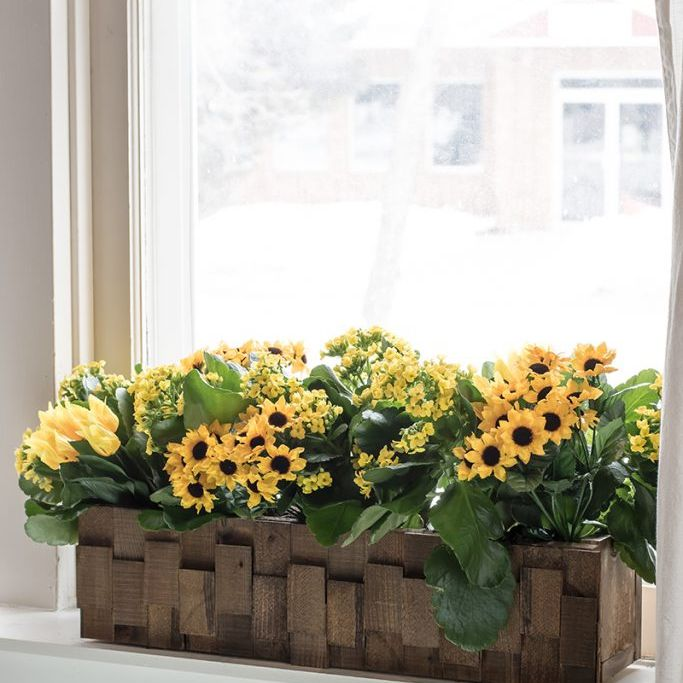 A wooden planter on a window sill