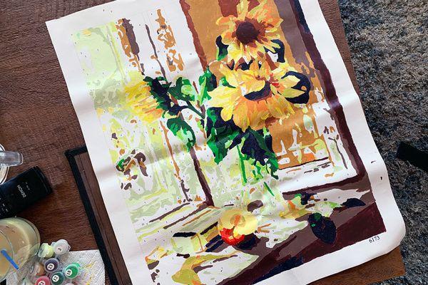 Colour Talk DIY Oil Painting Kit
