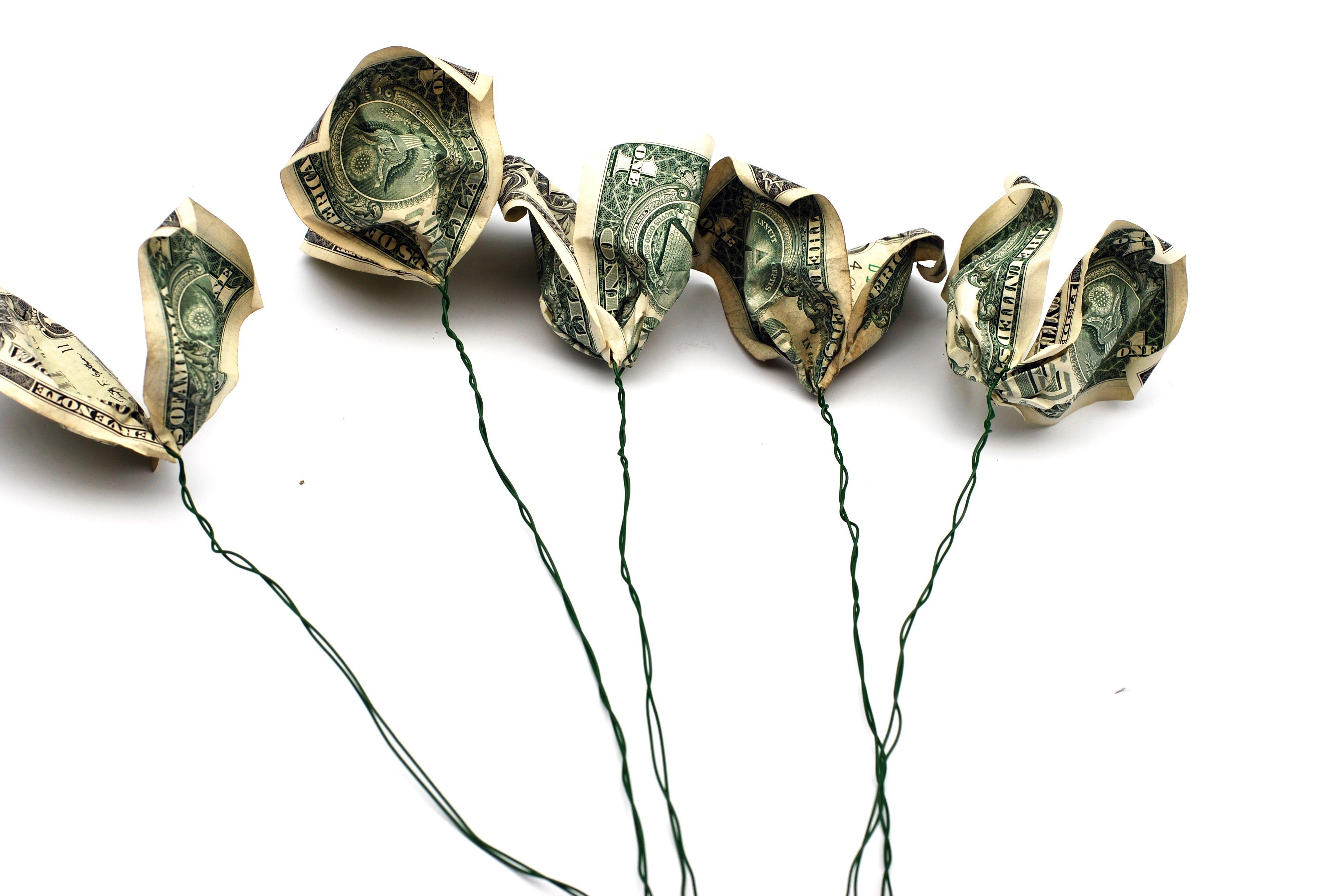Five dollar bill petals