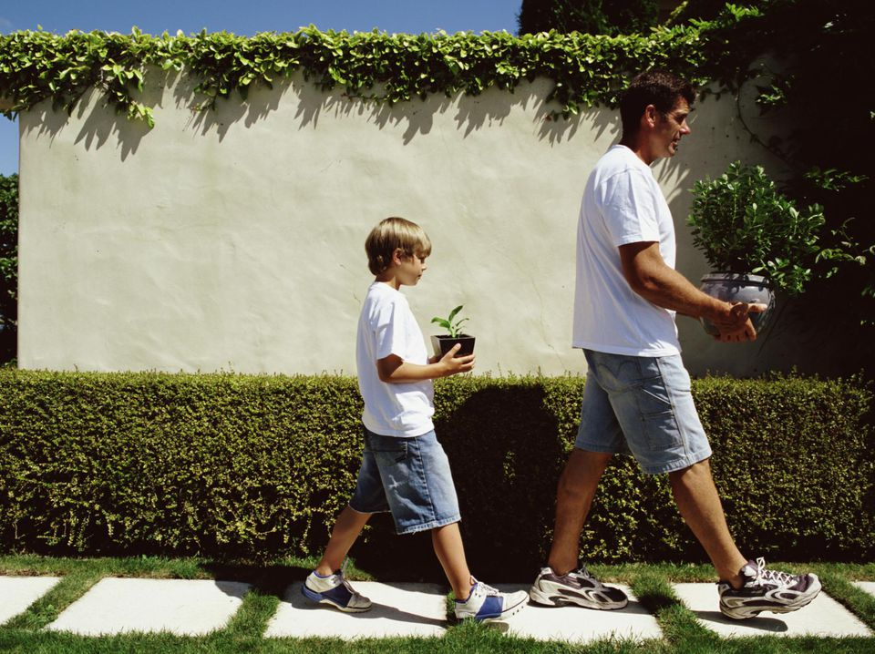 Father and son carrying potted plants along stepping stones, side view