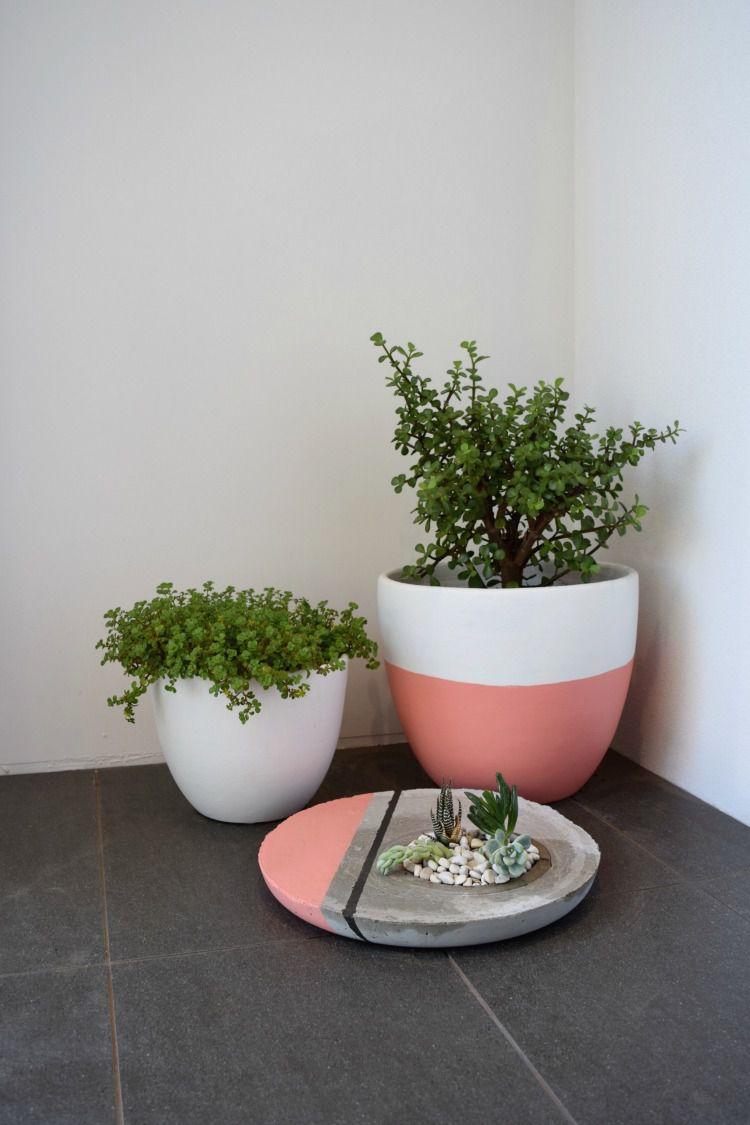 rock garden concrete planter