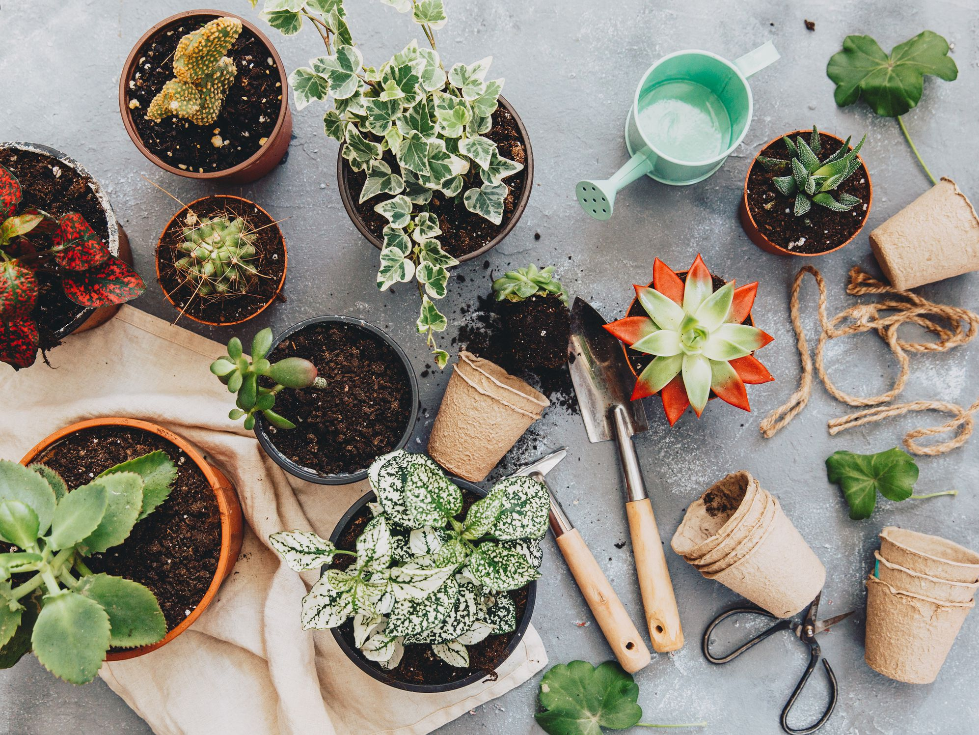 25 Diy Garden Projects Anyone Can Do
