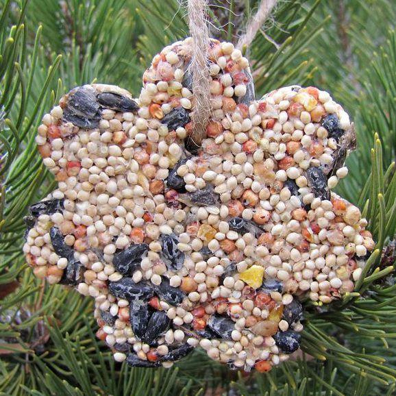 DIY Bird feeder ornaments