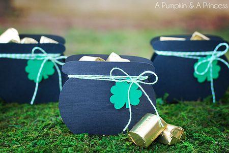 Lucky St Patrick S Day Diys