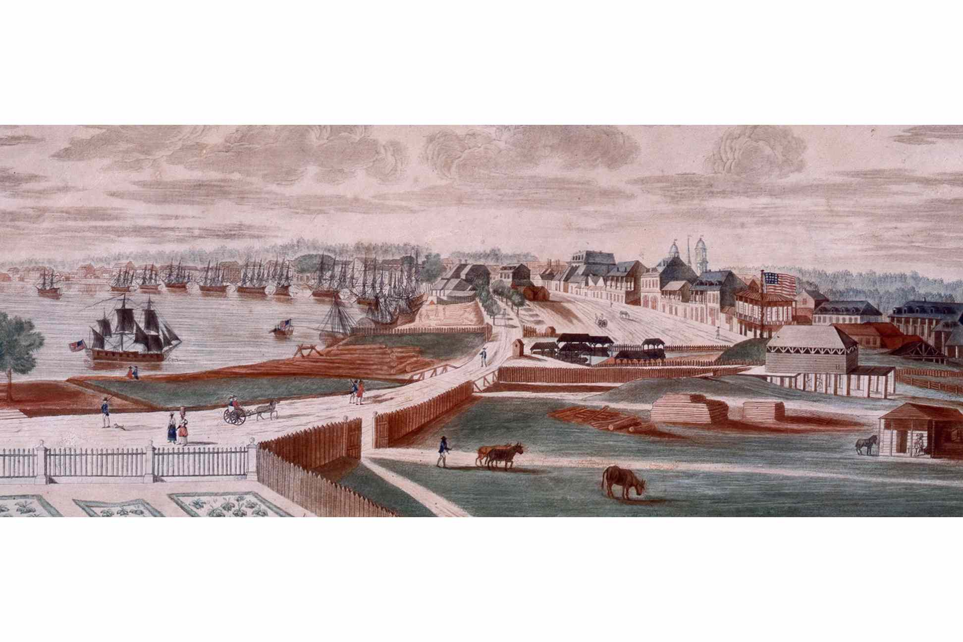 a view of the New Orleans in 1803