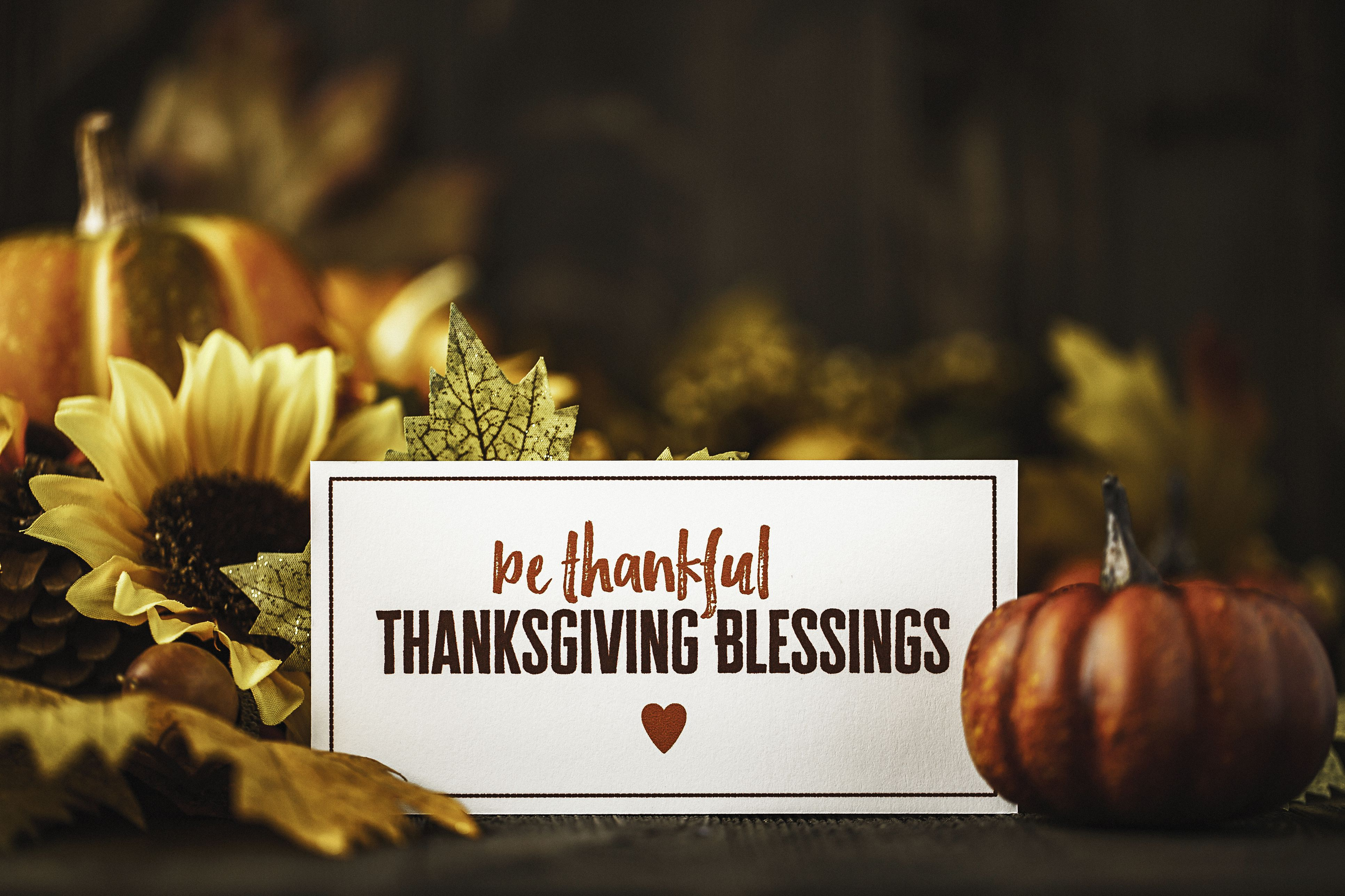 10 Free Printable Thanksgiving Table Decorations