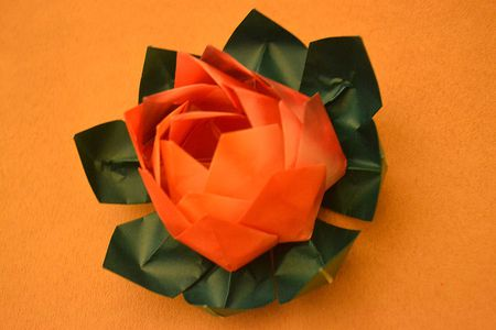 Different types of pretty origami flowers origami lotus mightylinksfo