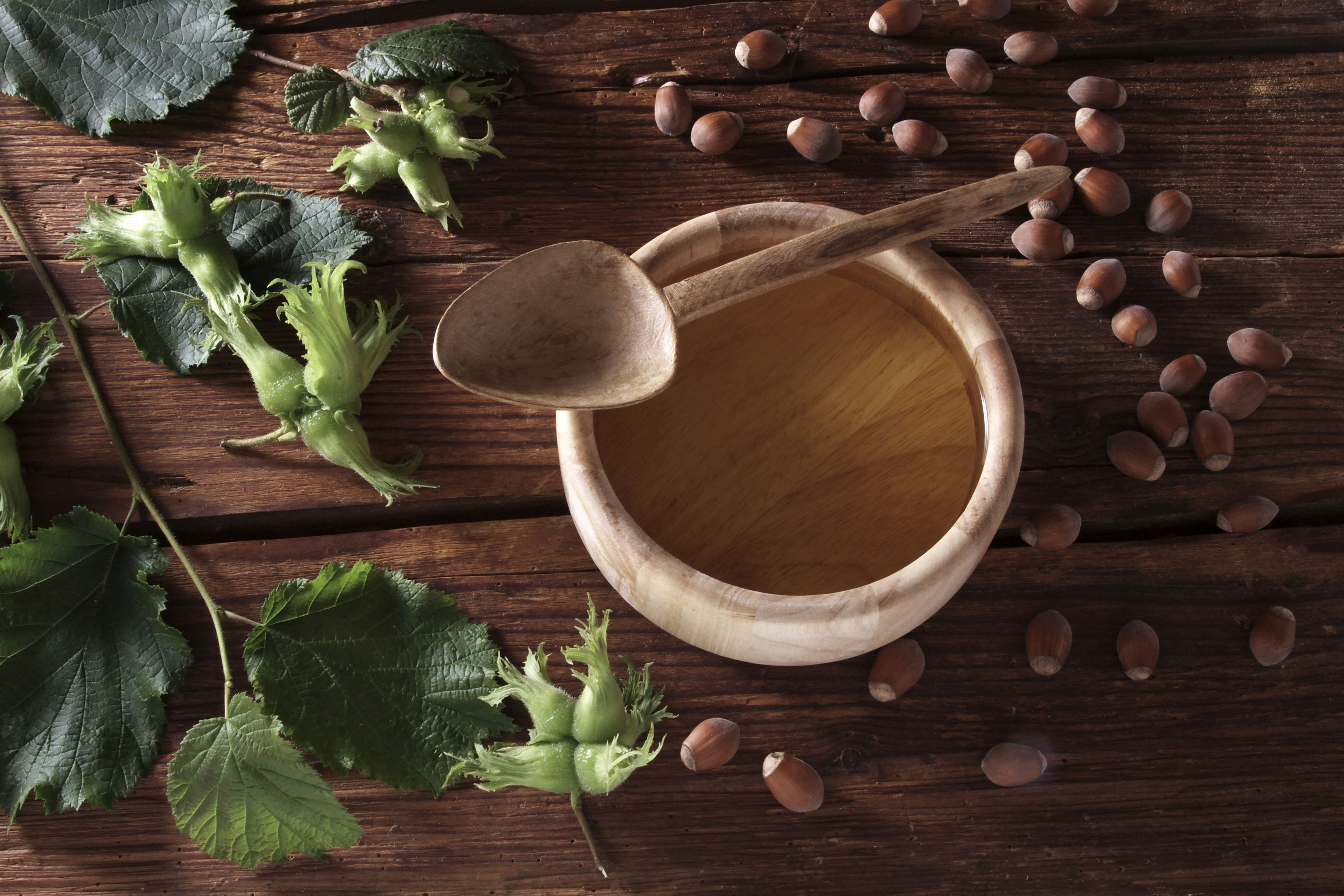 A bowl of hazelnut oil and some ripe and unripe hazelnuts (Corylus avellana) on rustic wooden boards