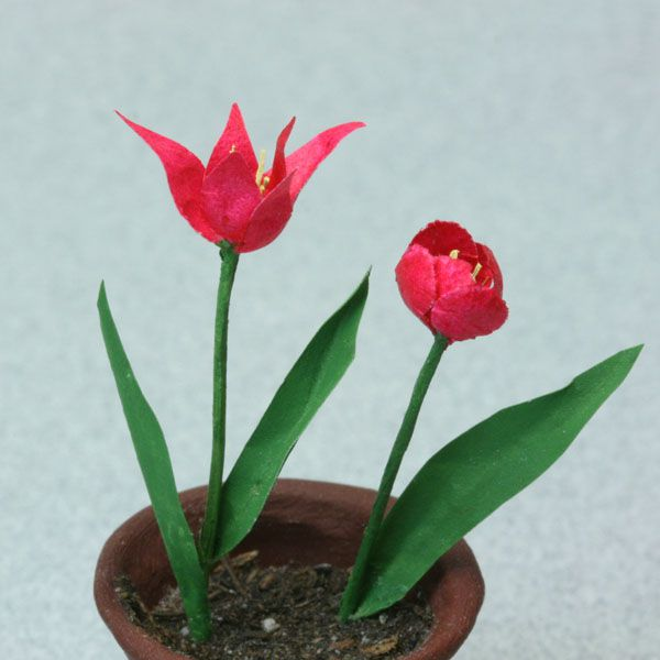 Deep pink lily flowered tulip and rounded cottage tulip in dolls house scale.