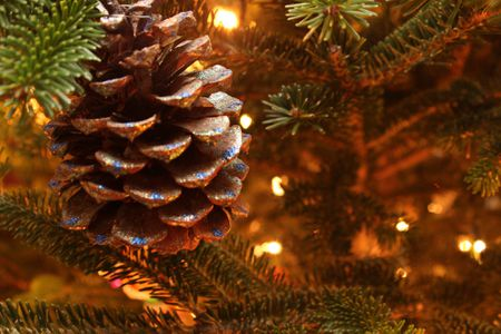 How to make sparkly and glittery pine cone ornaments glitter pine cone ornaments solutioingenieria Images