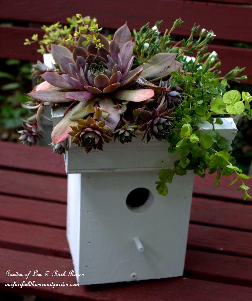 15 diy birdhouse plans and ideas add a green roof to a birdhouse solutioingenieria Gallery