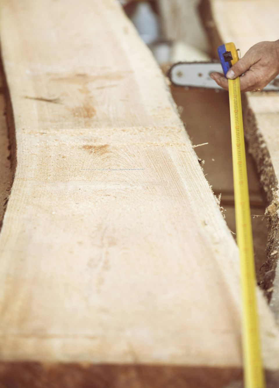 Carpenter measuring raw wooden plank