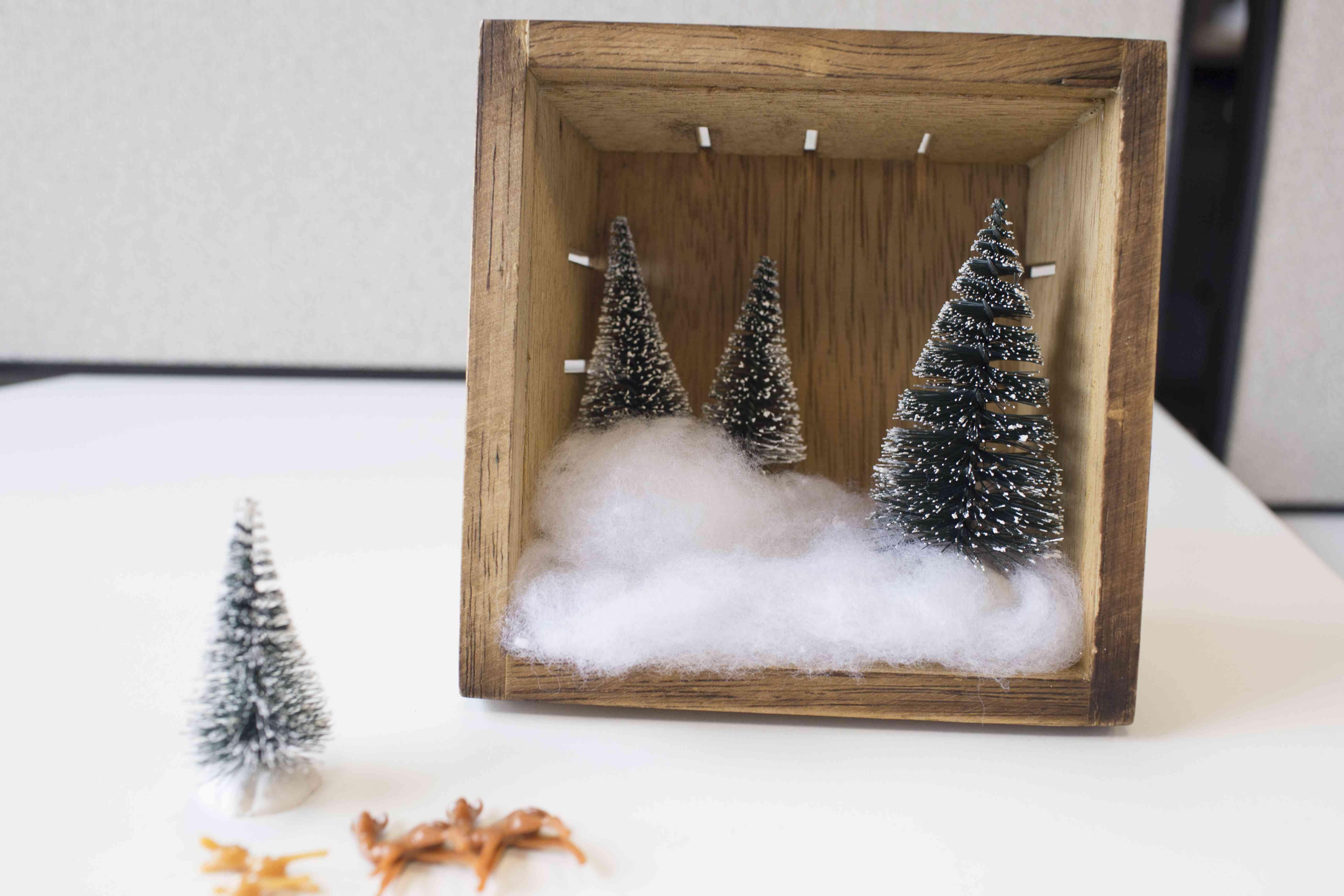 Mini trees in a box