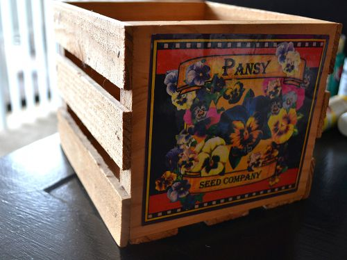 pansy crate