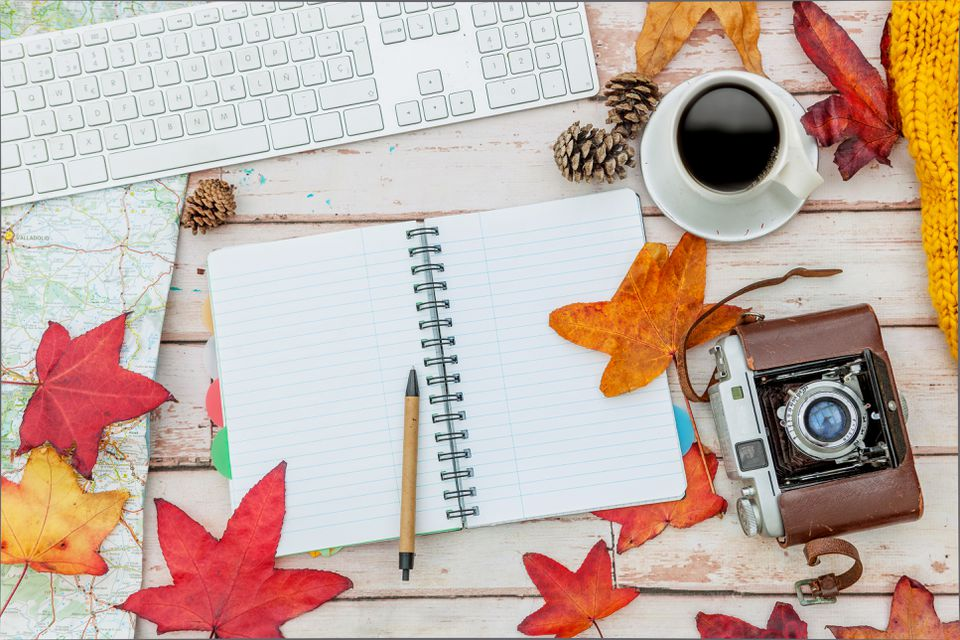 Finding fall leaves clip art