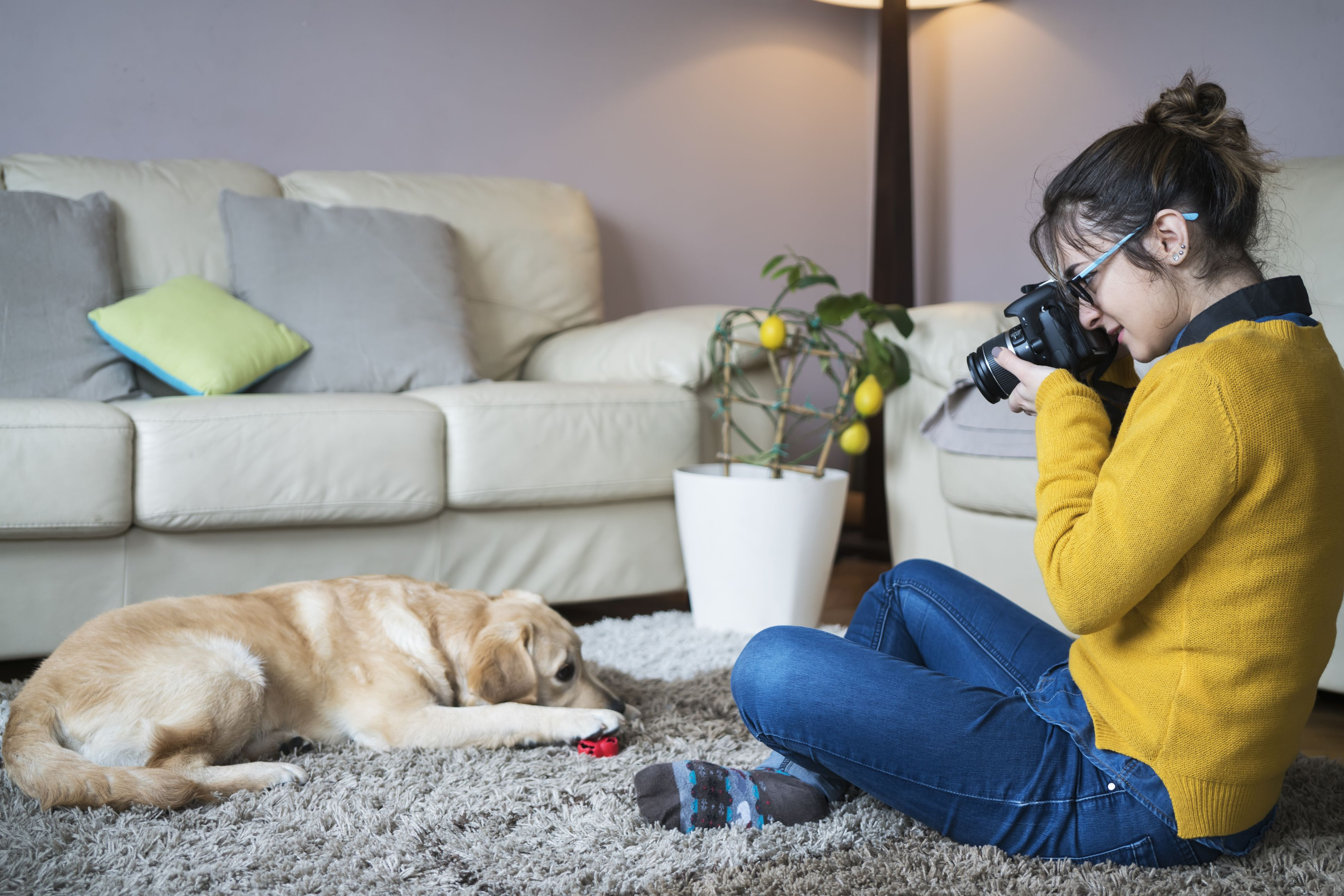 Young woman at home photographing dog
