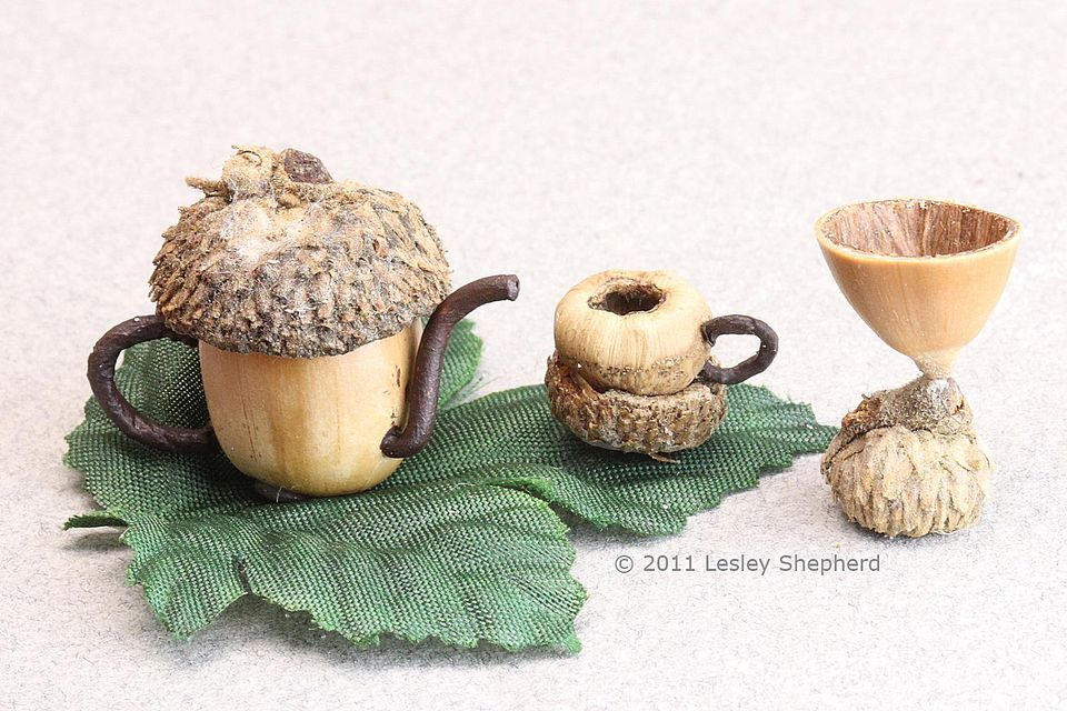 Scale miniature acorn teapot, teacup and wine goblet for a woodland scene.