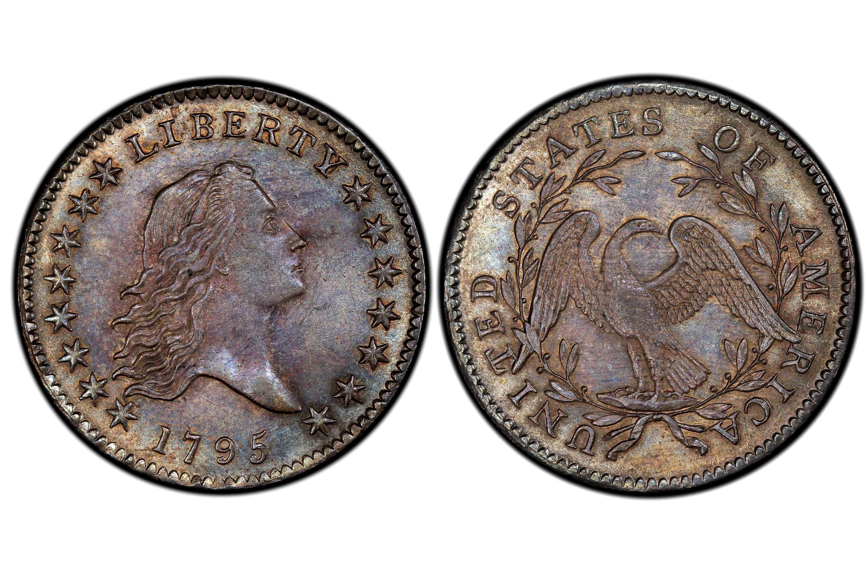 1795 Flowing Hair Half Dollar - Two Leaves