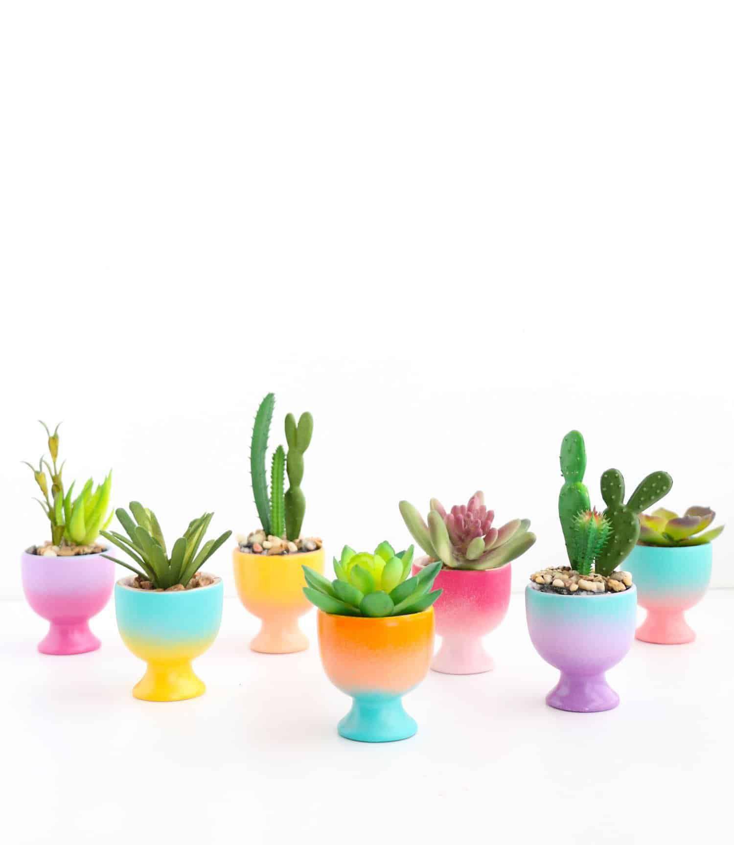 gradient egg plants