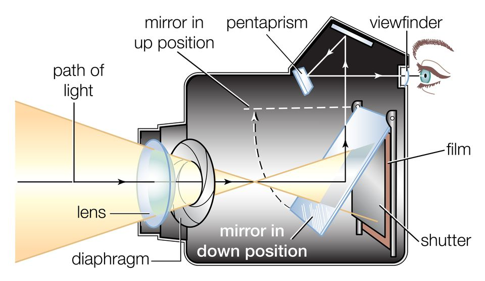 Cross section of a single-lens reflex (SLR) camera with a flip mirror