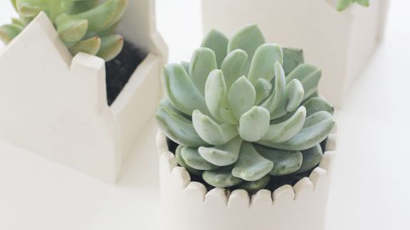 how to display succulents 30 cute examples.htm 16 diy flower pot ideas to showcase your plants  16 diy flower pot ideas to showcase
