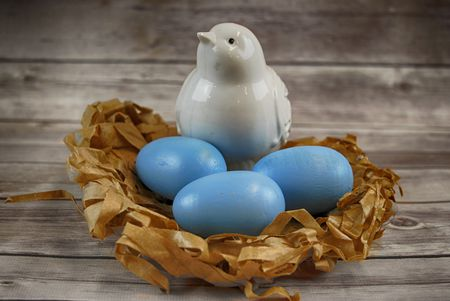 Spring Craft For Kids Robin S Eggs And Nest
