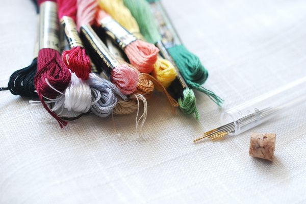 Fabric, Floss and Needles