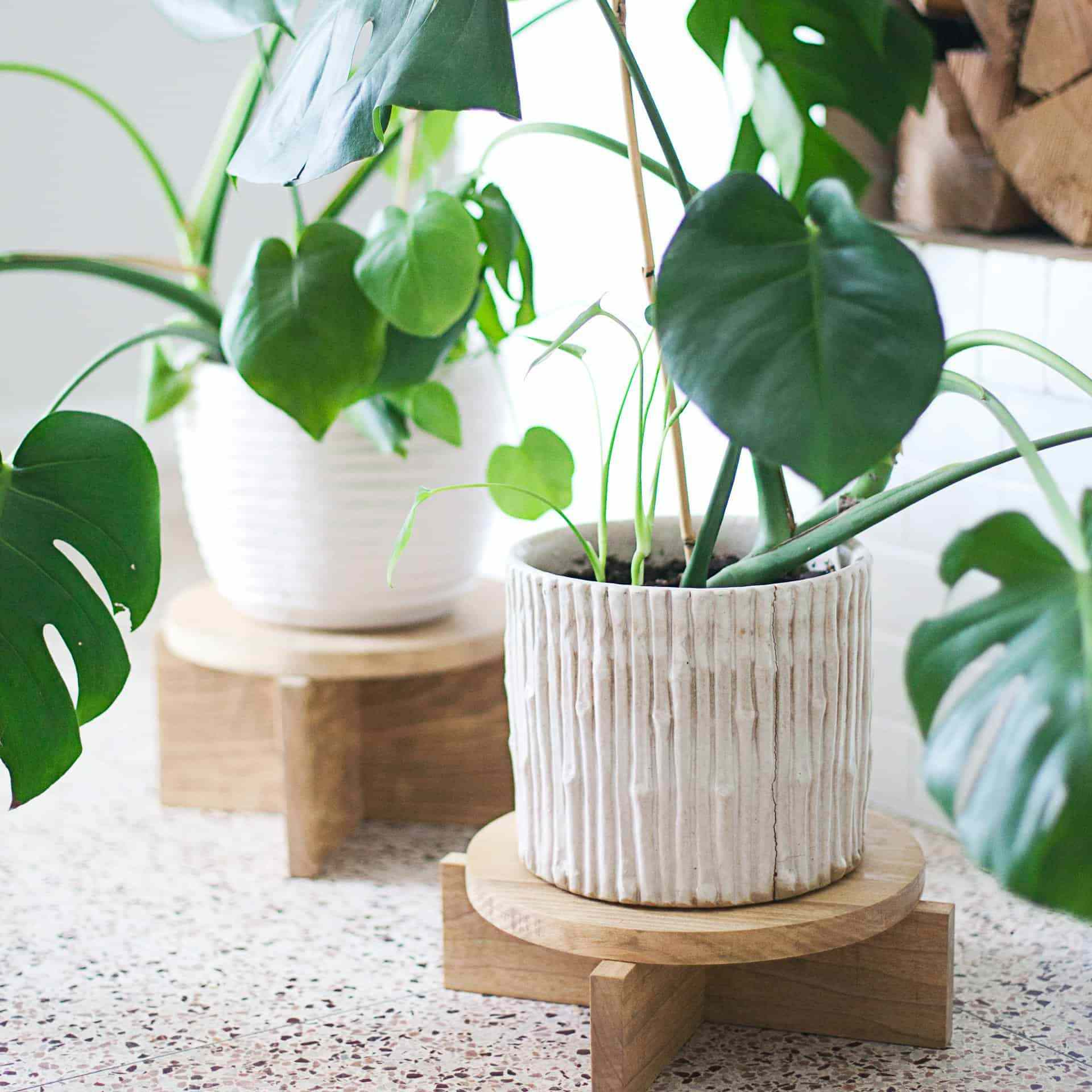 Two wooden plant stands on a counter
