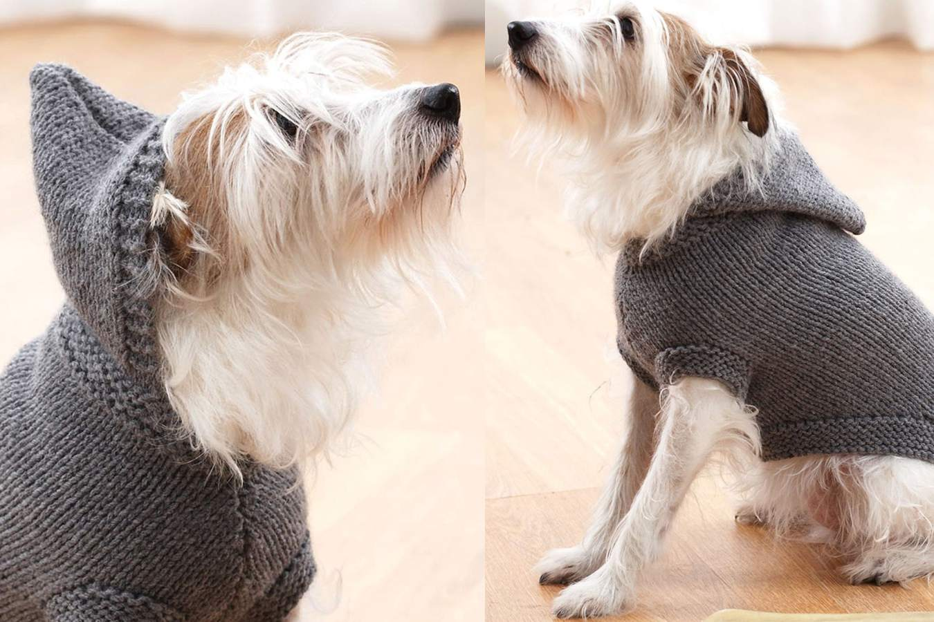 Hoodie Dog Coat Knitting Pattern