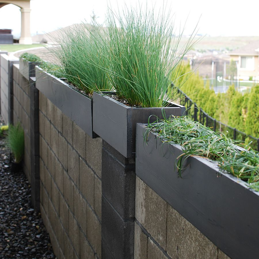 Modern planters on top of a concrete wall
