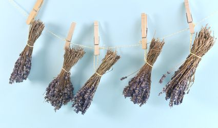 Dried Lavender Hanging on a String