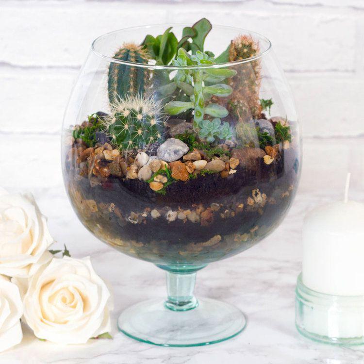 large succulent terrarium diy