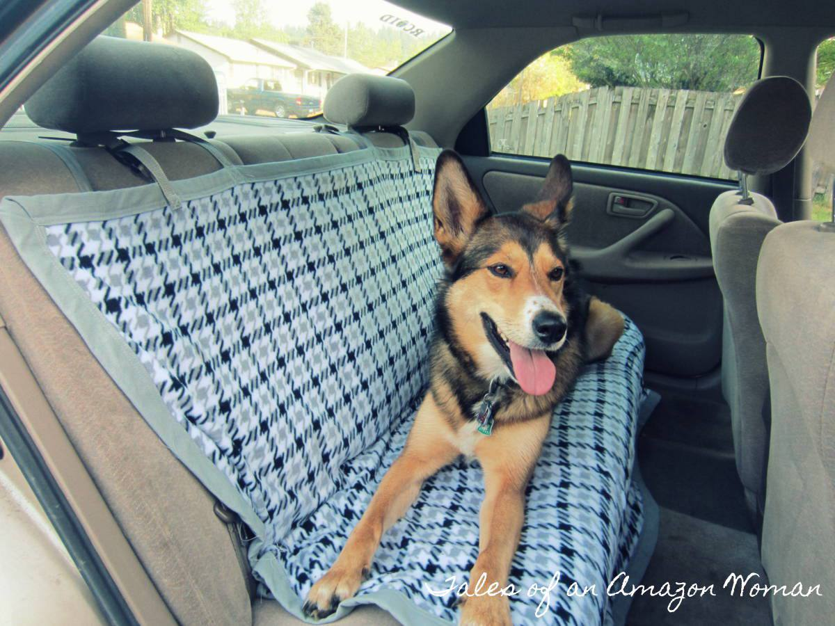 diy dog blanket for the car