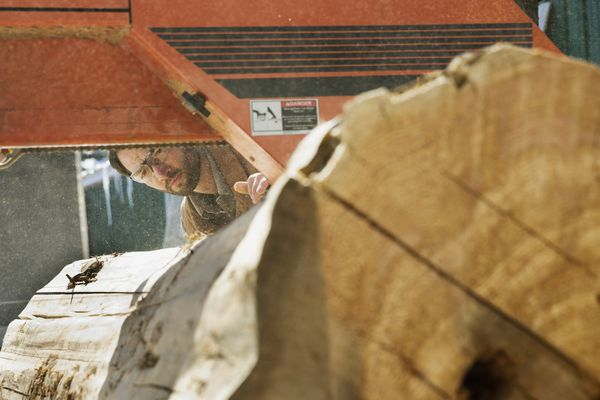 Woodworker looking at large log going through band saw