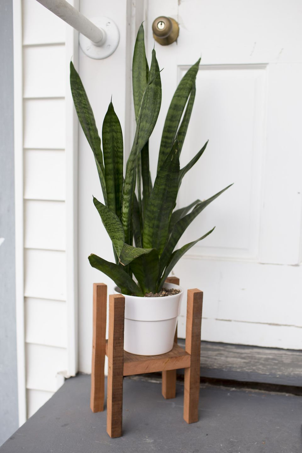 Mid-century modern plant stand