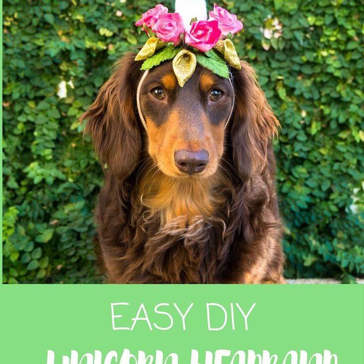 diy dog unicorn headband