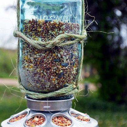 Mason jar bird house