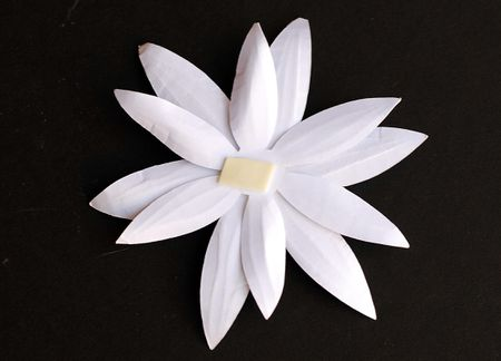 Paper Flower Embellishments